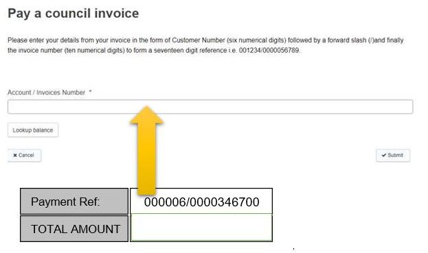 Pay a Council invoice