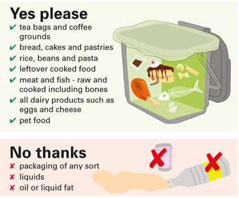 Food waste caddy 2017 Displays a larger version of this image in a new browser window